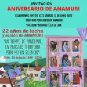 Chile. 22 años de lucha de las mujeres de ANAMURI
