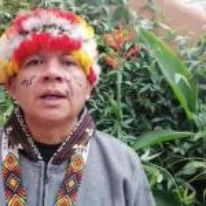 Pueblos originarios. José Gregorio Díaz Mirabal: «El día que desaparezcan los pueblos indígenas también desaparecerá la Amazonía»
