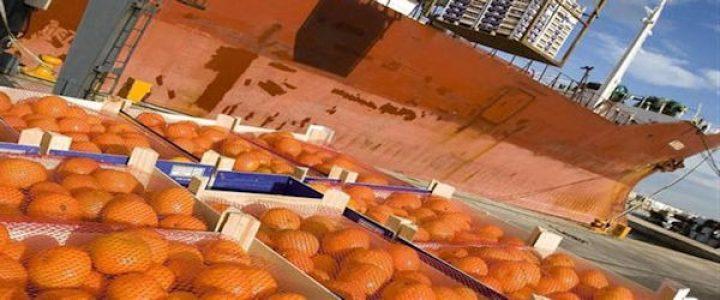 Estados Español. Rechaza naranjas importadas de Argentina por residuos de pesticidas