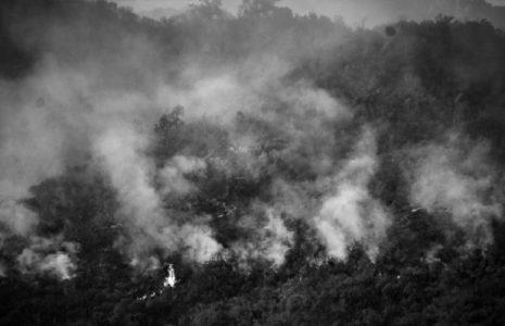 Argentina. Falta la presencia del Estado en los incendios en Córdoba