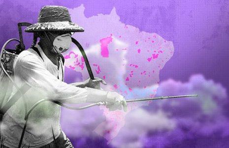 Brasil. Pesticidas de paraquat y glifosato mataron a 214 brasileños en la última década
