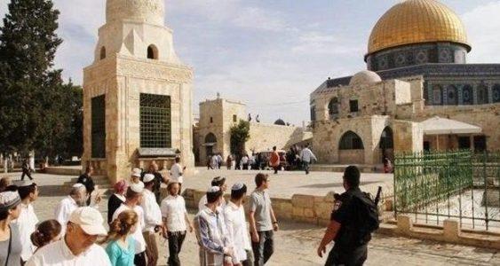 Palestina.  Colonos israelíes irrumpen en mezquita Al-Aqsa protegidos por fuerzas sionistas