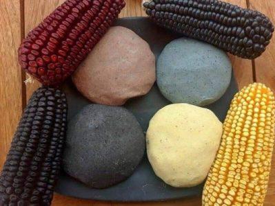 México. Es necesario frenar a los monopolios que promueven maíz transgénico: Sin maíz no hay país