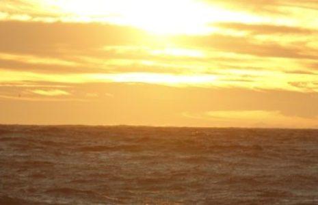 Ecología Social. Aumento record de temperatura superficial y acidificación de los océanos, evalúa nuevo reporte