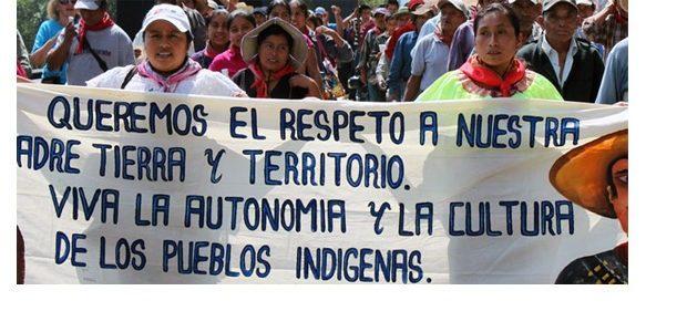 Pensamiento crítico. Autodeterminación de los pueblos indígenas y Estado nación
