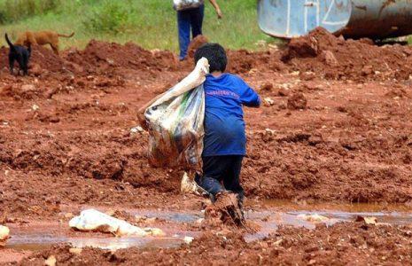 Brasil. Cada 15 días muere una niña o niño víctima del trabajo infantil
