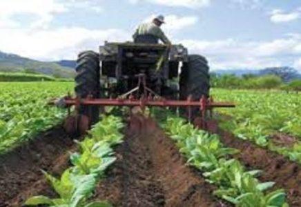 Venezuela. Pasar a la ofensiva económica productiva