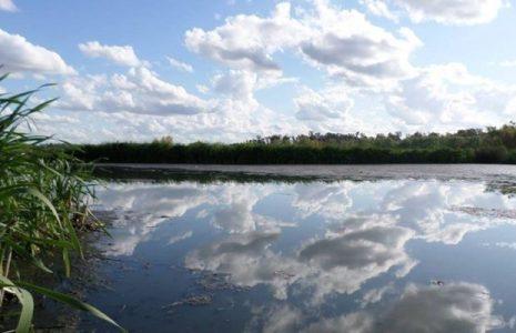 Argentina. El Estado nacional cedió a Racing Club 32 hectáreas del humedal y Reserva Natural Laguna de Rocha