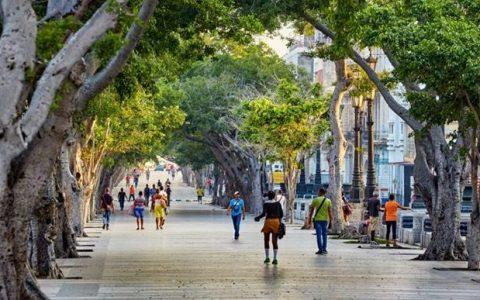 Cuba ¿Hay una nueva estrategia económica o la estrategia es implementar lo ya aprobado?