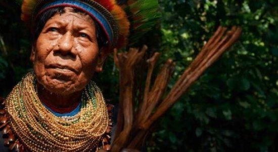 Colombia. Medicina ancestral: una forma de resistir al conflicto armado en el Pacífico
