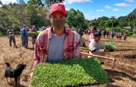 Brasil. Con apoyo del MST, la comunidad urbana inicia un huerto agroecológico en el gran Curitiba