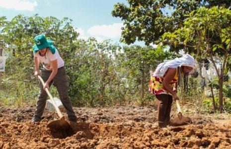 Brasil. El MST va a reforestar 5.000 hectáreas afectadas por tragedia provocada por empresa Vale en Mariana, Minas Gerais