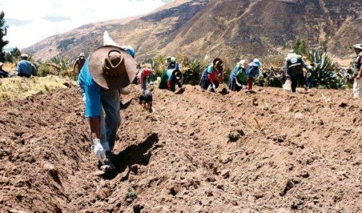 Perú. Contrabando detrás de la mascarilla