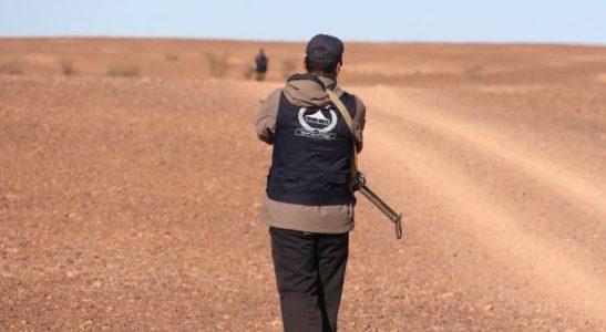 Sáhara Occidental.  Narcotráfico, milicias y resiliencia: El Guerguerat,   invadida por Marruecos