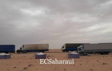 Sahara Occidental.                  El montaje favorito del Majzén; El Sáhara y la inmigración.