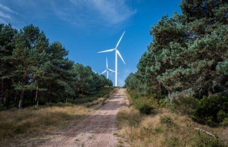 Ecología Social. Las consecuencias ambientales de una transición energética desordenada y con prisa