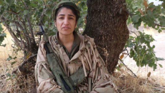 Kurdistán. Guerrillera Serhildan: El estado turco no detendrá a las guerrillas