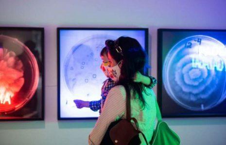 Chile. Evento de artes visuales expone obras de mujeres latinoamericanas