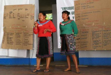 Perú. ¿Qué desafíos tiene el Plan de Acción en Género y Cambio Climático?