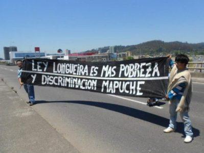 Nación Mapuche. Lafkenches celebran anulación parcial de la «Ley Longueira»