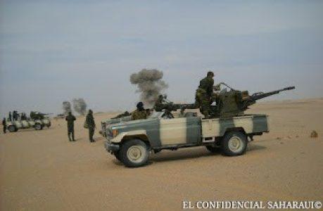 Sáhara Occidental. 14 días de guerra de liberación