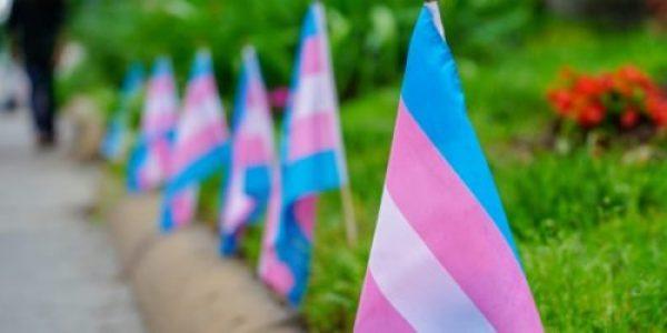 Disidencias Sexuales. La Asociación Estatal de Profesionales de la Sexología en el debate sobre la Ley Trans