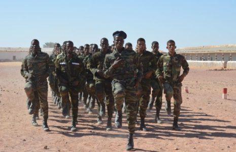 Sáhara Occidental. «Apenas quedan hombres en los campamentos»: los refugiados saharauis se unen al Frente Polisario para combatir a Marruecos