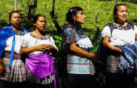 Feminismos. Por una vida libre de violencia para las mujeres