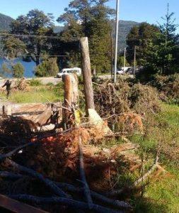 Nación Mapuche. Fewla, contingente policial a fueras del Lof Lafken Winkul Mapu, se efectuaron disparos