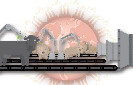 Ecología Social. «¿Qué tiene que ver la producción industrial de carne con la crisis climática?» Edición historieta
