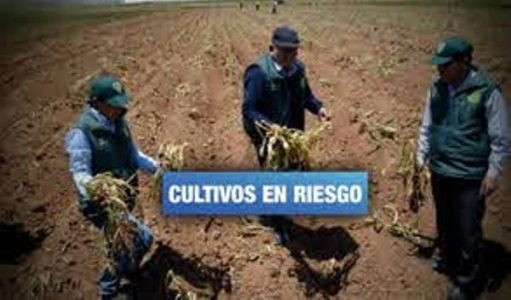 Perú. Declaran en emergencia a 181 distritos del norte peruano por falta de agua