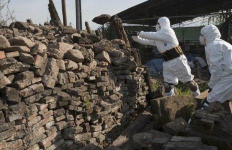 Argentina. Piden que familiares se acerquen para lograr identificar más de 600 cuerpos NN de desaparecidos