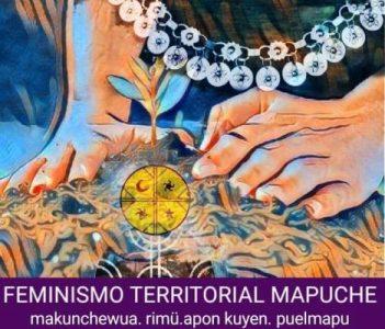 Nación Mapuche. «Contra la manipulación de los medios hegemónicos: sobre la utilización de nuestra palabra»