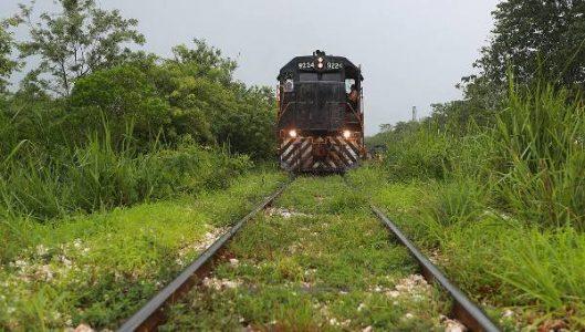 México. Comunidades obtienen suspensión definitiva del tramo 2 del Tren Maya