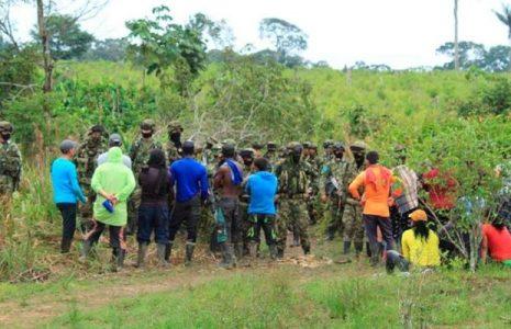 Colombia. Comunidades del Guayabero denuncian agresiones del Ejército y abandono del Estado