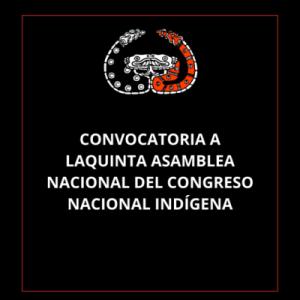 México. Congreso Nacional Indígena
