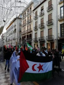 Concentraciones en Andalucía en apoyo al pueblo saharaui (vídeos)