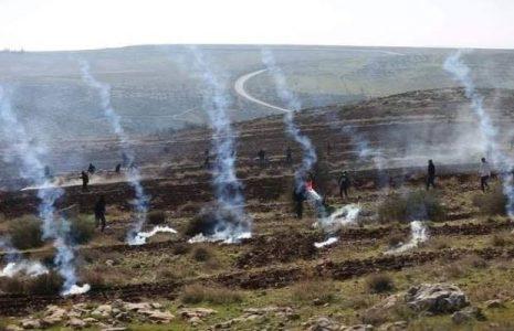 Palestina. Los palestinos responden a las agresiones  de ocupación en la Jerusalén ocupada y Cisjordania