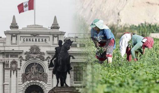 Perú. Congreso debate dictamen sobre nueva Ley Agraria