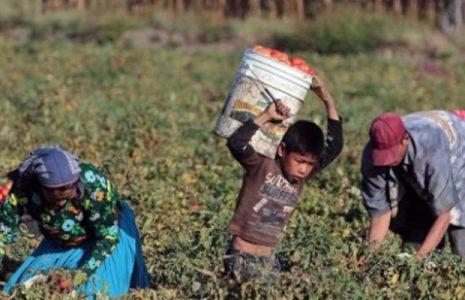 Argentina. Resumen Gremial: Procesan a directivos de una productora de frutos rojos por «trata laboral» de migrantes // Triunfo de los trabajadores de la metalúrgica GRI Calviño, tras un paro por tiempo indeterminado (+ info)