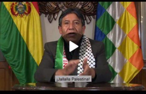 Palestina. Vicepresidente de Bolivia expresa un mensaje de solidaridad, respeto e identificación al pueblo palestino.