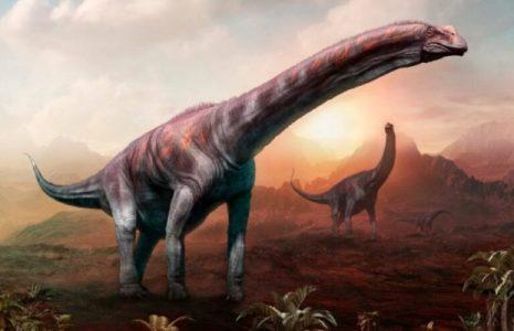 Argentina. Fósiles de dinosaurios encontrados pertenecerían a la criatura más grande de la historia de la Tierra