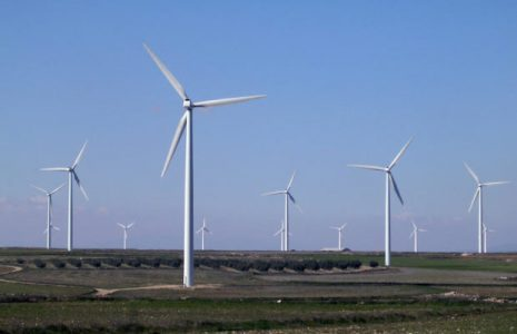 Ecología Social. ¿Otra revolución verde?