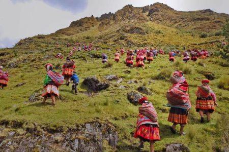 Perú. Las comunidades indígenas están reforestando los Andes
