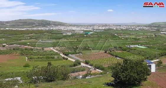 Siria. Fuerzas de ocupación israelíes secuestran a pastor sirio al sur del país