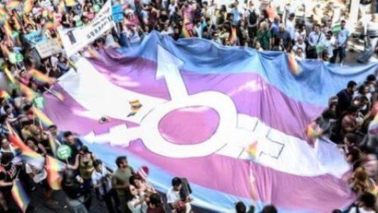 Disidencias. La izquierda y la cuestión trans