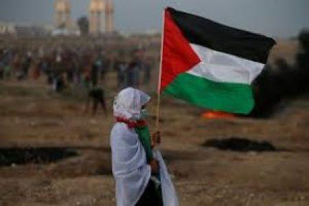 Palestina. Apartheid
