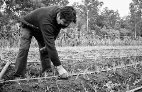 Argentina. La tenencia de la tierra sin mitos: una demanda que quiere ser ley