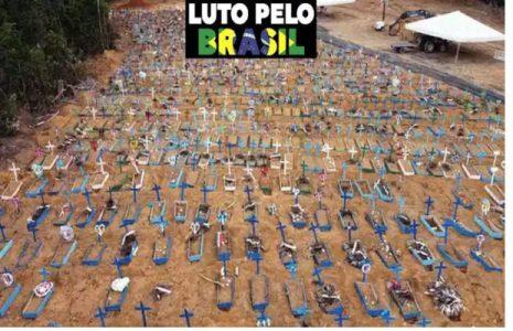 Brasil. Vaticinan cinco mil muertes diarias por pandemia