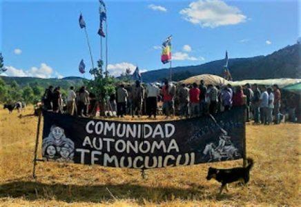 Nación Mapuche. Fiscalía prepara a testigos para hacer responsable de delitos a menor de Temucuicui